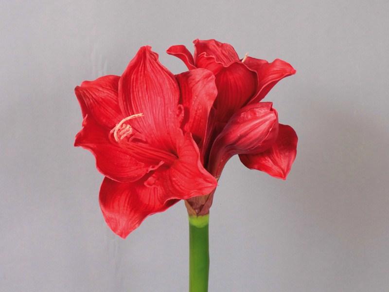 Fleur artificielle amaryllis rouge esprits bois 48 for Amaryllis rouge signification