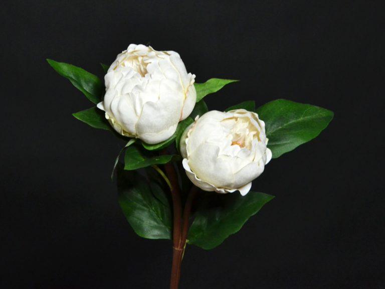 pivoine artificielle blanche
