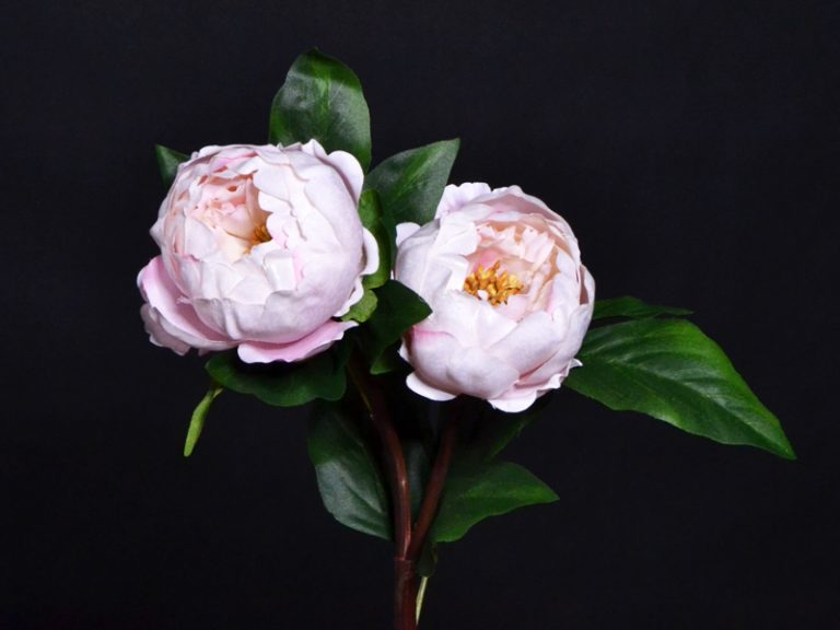 pivoine artificielle rose clair