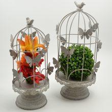 cage grise papillon