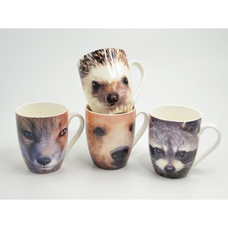 mugs nature